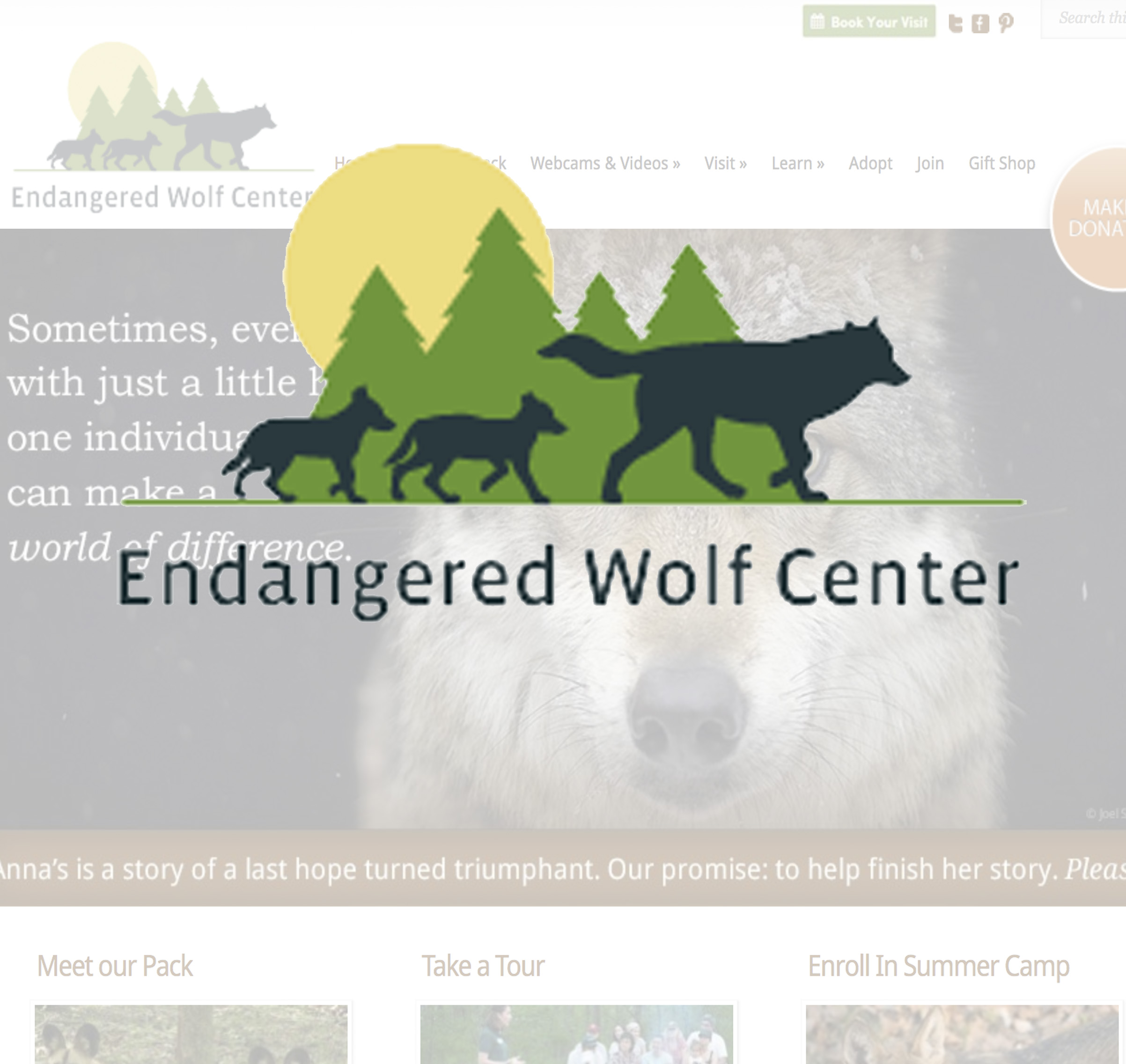 Endangered Wolf Center: Putting Some Howl in the Heart of a Non-profit Organization